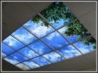Фирма Пластиковые окна и потолки